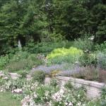 Felicita Gardens 006