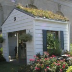 Shed with living roof.